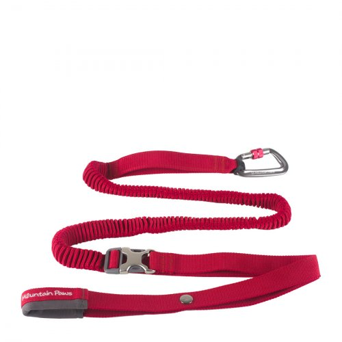 Shock Absorber Dog Lead - Red