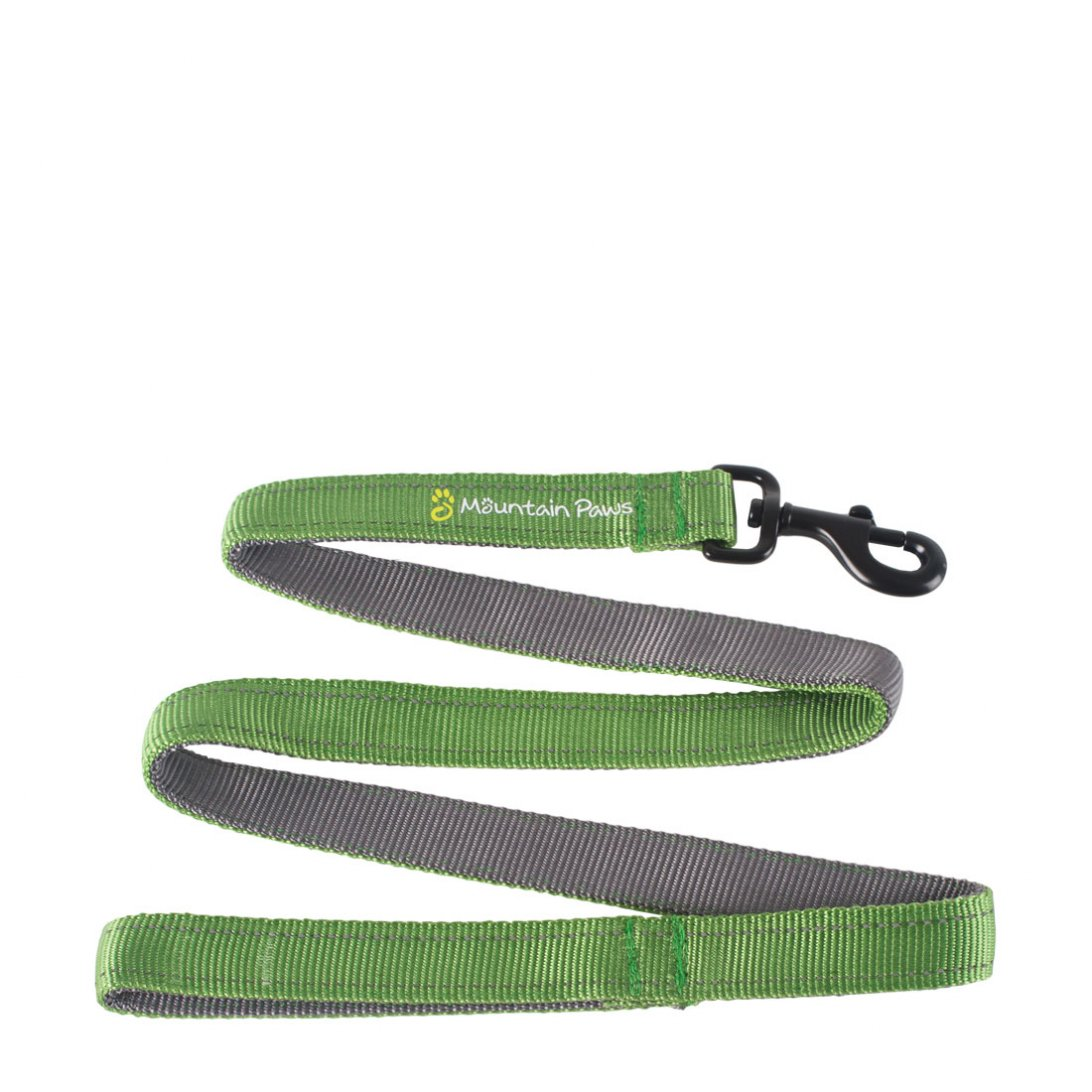 Green dog lead