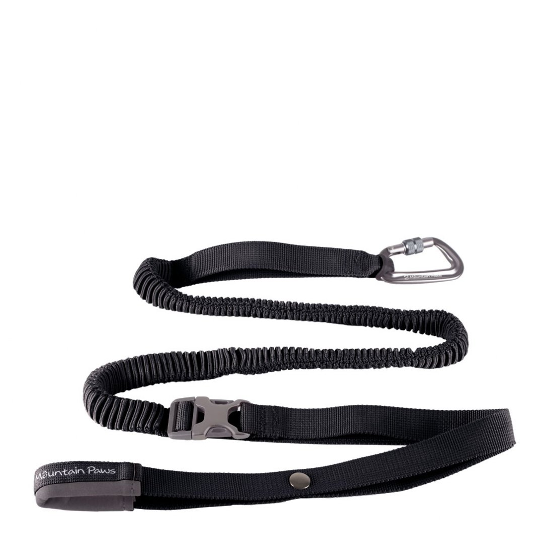 Black shock absorber dog lead