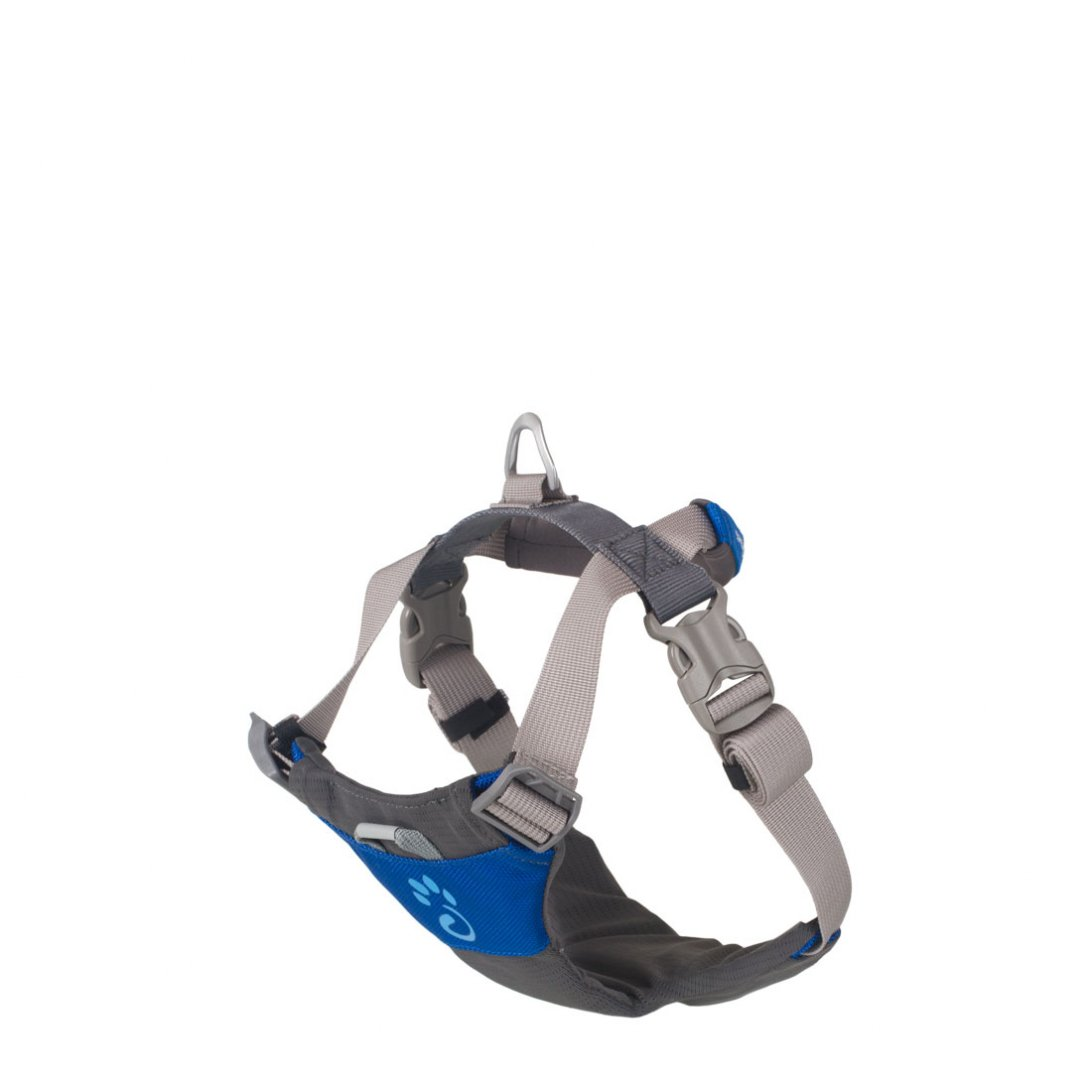 Large blue dog harness