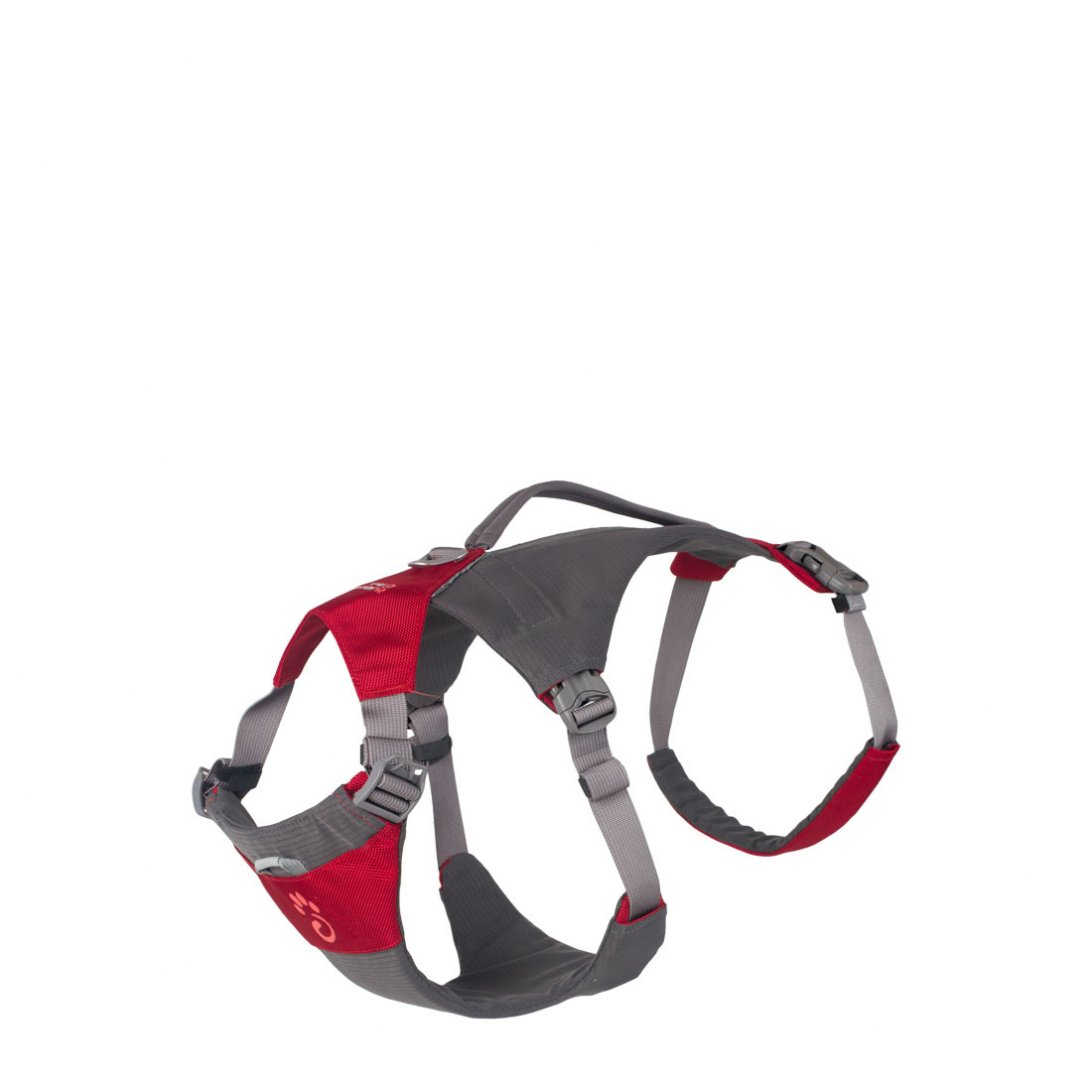 Red dog hiking harness