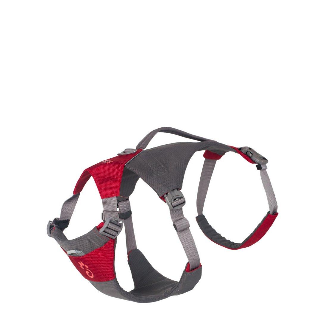 Medium red dog hiking harness