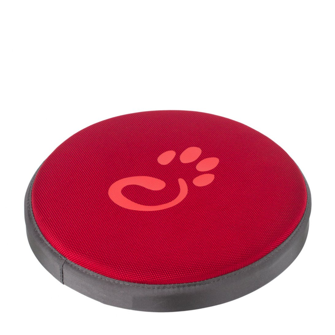 Red dog frisbee