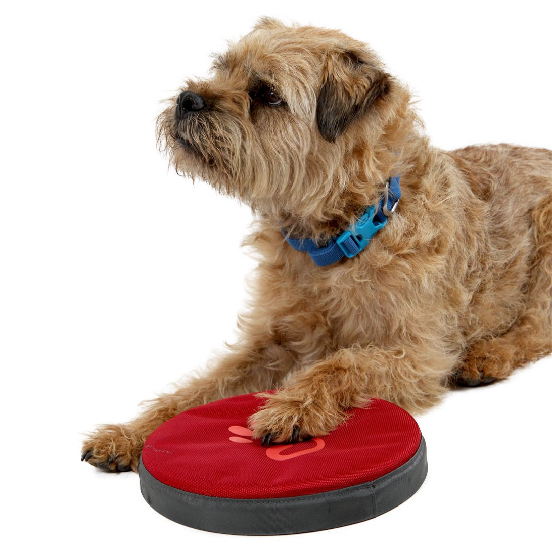 Dog Frisbee - Red