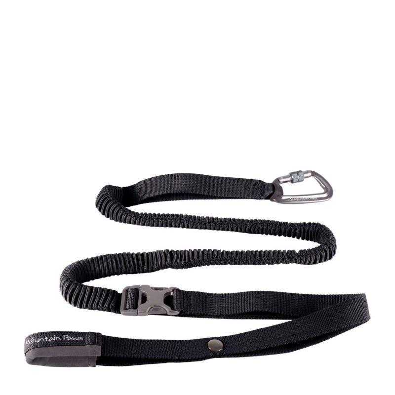 Black shock absorber dog lead