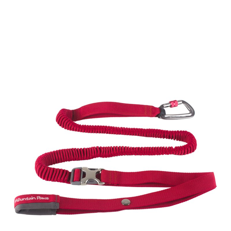 Red shock absorber dog lead