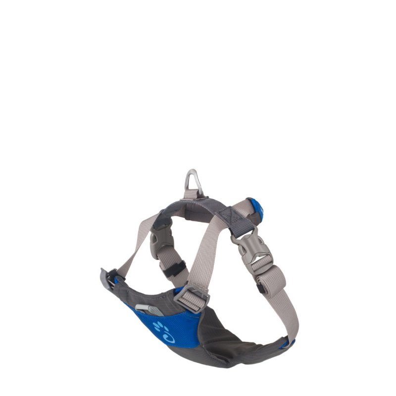 Medium blue dog harness