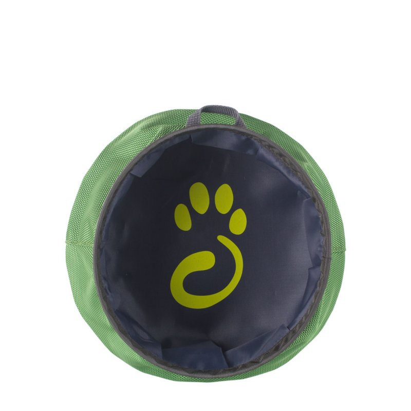Green dog water bowl