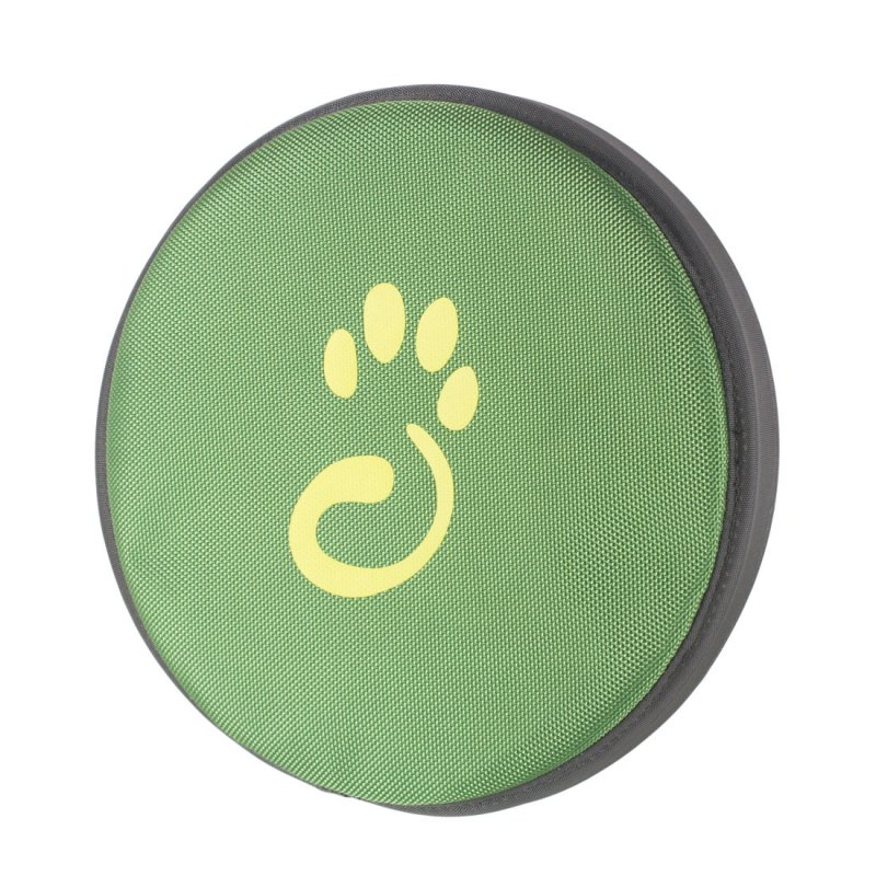 Green frisbee for dog