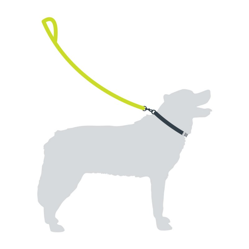 Dog Lead - Green